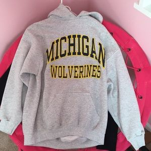 Other - Michigan hoodie